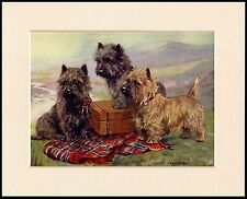 CAIRN TERRIER THREE LITTLE DOGS AND TARTAN RUG DOG PRINT MOUNTED READY TO FRAME