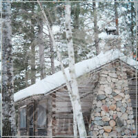 PANOPTICON - SCARS OF MAN ON THE ONCE NAMELESS WILDERNESS PART 2   CD NEU