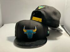 Chicago bulls snapback to match Jordan Gamma 11