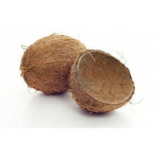 100% NATURAL 5PCS COCONUT SHELL ECO FRIENDLY COCONUT BOWL FREE SHIPPING
