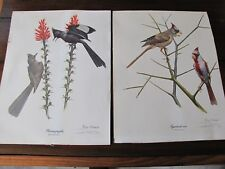 2-Fine Art Lithographs Phainopepla & Pyrrhuloxia By Ray Harm 11x14 Artist Signed