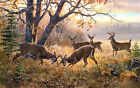Two deer in a fight oil painting home decor wall art printed on canvas L1258