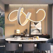 Spiral LED Wave Ceiling Pendant Lamp Chandelier Modern Infinity Light Fixtures