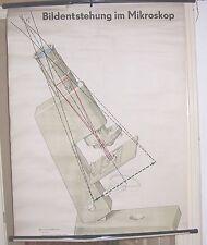 DDR Schulkarte Rollkarte Wandtafel Bildentstehung Mikroskop deko vintage !