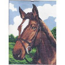 Kit Canevas Portrait Cheval 15 x 20 cm REF bl0500/029