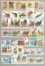 Die Fauna. Das große Lot verschiedener Briefmarken mit den Tieren, den Vögeln un