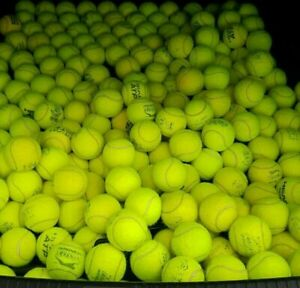 Used Tennis Balls For Dogs In Great Condition Clean & Pet Friendly Ex Match