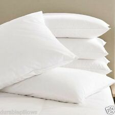 Super Plush Pillows Dust Mite Resistance,Hypoallergenic, King size set of 4