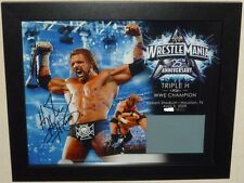 WWE Triple H Wrestlemania 25 Auto Autograph Plaque With Ring Mat #ed 195 of 500