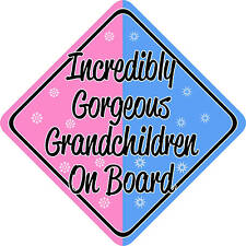 Incredibly Gorgeous Grandchildren on Board Car sign