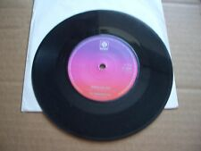 """THE RAGAMUFFINS - WHAT'LL I DO - THE GREAT GATSBY SONG / MAPLE LEAF RAG - 7"""" SIN"""
