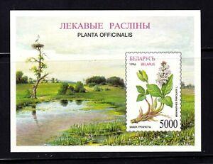 Belarus Souvenir Sheet #172, MNHOG, XF