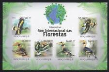 MOZAMBIQUE 2012 BIRD STAMPS BIRDS IMPERF SS MNH - BIRDL650