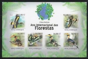 MOZAMBIQUE 2012 BIRD STAMPS BIRDS IMPERF SS MNH - BIRDL650