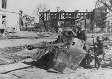 WW2 Photo German PAK38 Stalingrad  WWII Russia World War Two Eastern Front