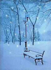 LED Tela di Natale neve foto con luci a LED-Snowy Bench Scena