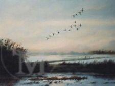 Dealer or Reseller Listed Lithograph Birds Art Prints