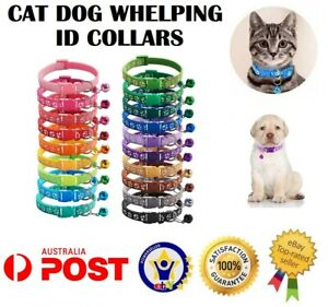 Dog Cat Collar Whelping ID Pet Puppy Kitten Adjustable Harness with Bell AUS