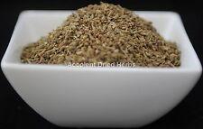 Dried Herbs: ANISEED  Pimpinella anisum   50g