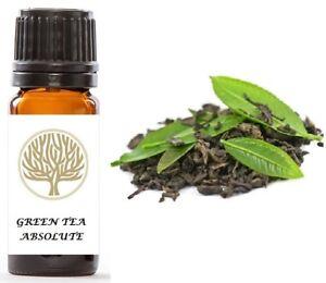 100% Pure Green Tea Absolute Oil