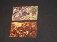 Vintage Postcard Lot OZARK STYLE BUSINESSMAN Moonshine Smoky Mountains (PC104)