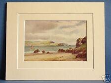 CORK HARBOUR COUNTY CORK MUNSTER IRELAND VINTAGE DOUBLE MOUNTED PRINT c1920