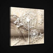 CANVAS Wandbild Leinwandbild Bild BLUMEN PUSTEBLUME SCHMETTERLING GOLD 3FX2438O5