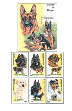 CZA9903 Dogs 6 stamps and block MNH TCHAD 1999