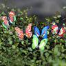 4X Butterfly Miniature Fairy Garden Ornament Plant Pot Craft Dollhouse DecoraBe