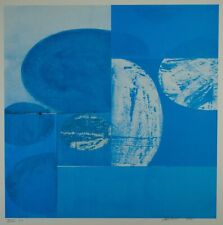 Charles Arnoldi XVII 1/16 Abstract Art Signed & Numbered Lithograph 2001 RARE