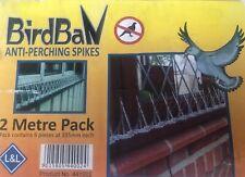 BirdBan Anti Perching Bird Spikes (up to 50% wider than most) - 2 Metre Pack!