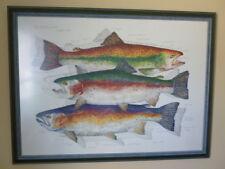 Eileen Klatt Print Rainbow / Rainbow Trout 1993  Fish Art Offset Print