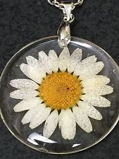 "Flower Daisy White Real in Clear Resin Circle Charm Tibetan Silver 18"" Necklace"