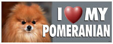 I Love My Pomeranian Dog Bumper Sticker #3050