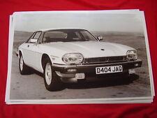 1987 JAGUAR XJ COUPE  11 X 17  PHOTO   PICTURE