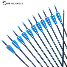 "Archery Carbon Arrows 28""/30/31"" Hunting Targeting Arrow Removable Screw-in Tips"