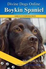 Boykin Spaniels: Divine Dogs Online