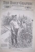 1888 New York Daily Graphic - August 1-Bartley Campbell