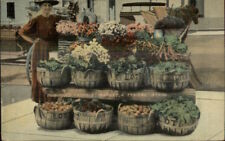 Dubuque IA Woman at Farm Stand Outdoor Market c1910 Postcard