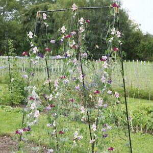 Bohnenzelt Tomatenhaus Gewächshaus Rankhilfe Bohnenturm Hochbeet Bohnengestell 1