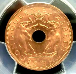 PCGS MS66RD Gold Shield-Rhodesia & Nyasaland 1963 Elephants 1 Penny Super GEMBU