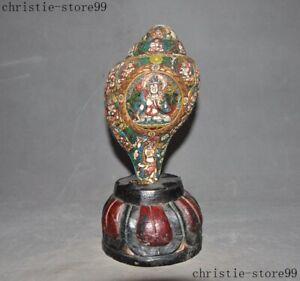 Tibet temple shell Painted White Tara Kwan-yin Conch Trumpet Horn Wood Base Set