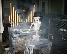 Photo.  2000s.  Scary Fear Fright - Skeleton Playing Organ