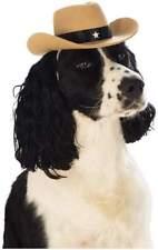 Ropa y calzado gorro sin marca para perros