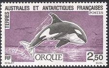 FSAT/TAAF 1993 Whale/Orca/Marine Mammals/Nature/Wildlife 1v (n23192)