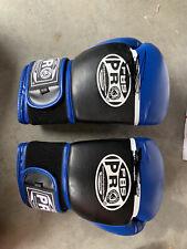 Kids Boxing Gloves Set
