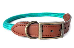 Douglas Paquette MOUNTAIN ROPE Emerald Braided Nylon & Leather Dog Collar