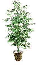 6' PHOENIX PALM ARTIFICIAL SILK TREE PLANT ARRANGEMENT in BASKET DATE ARECA SAGO