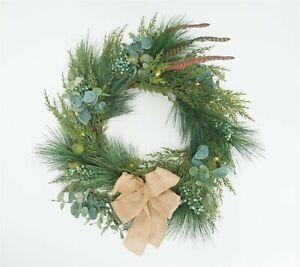 """Martha Stewart Indoor/Outdoor 22"""" Prelit Winter Floral Wreath Clear NEW H219361"""