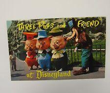 Three Little Pigs and Wolf Postcard Disney Productions Disneyland Magic Kingdom